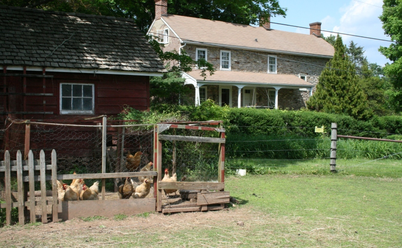 FOXCROSS FARM